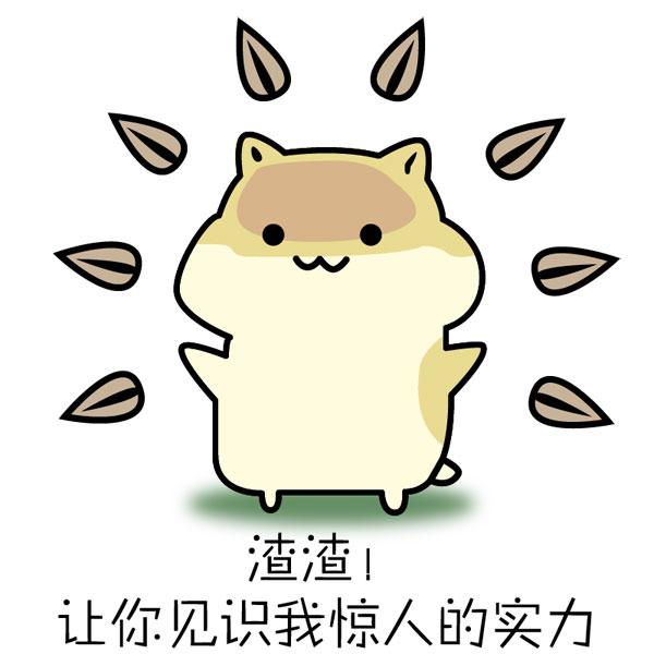 松鼠瓜子表情包图片