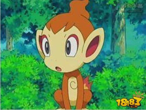 小火猴进化材料  绿 1突破:  绵绵玩偶,豪力玩偶,黑暗鸦玩偶,胡说树